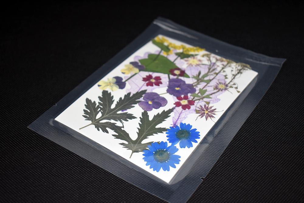 """""""Multicolour"""" Bouquet Dried Flowers"""
