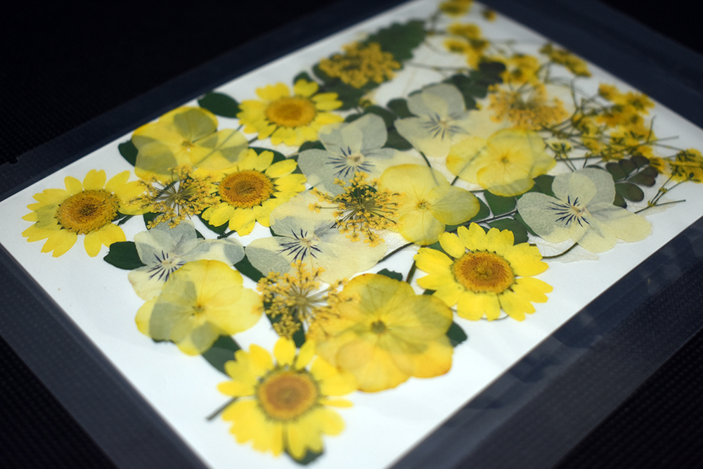 """""""Yellow"""" Bouquet Dried Flowers"""