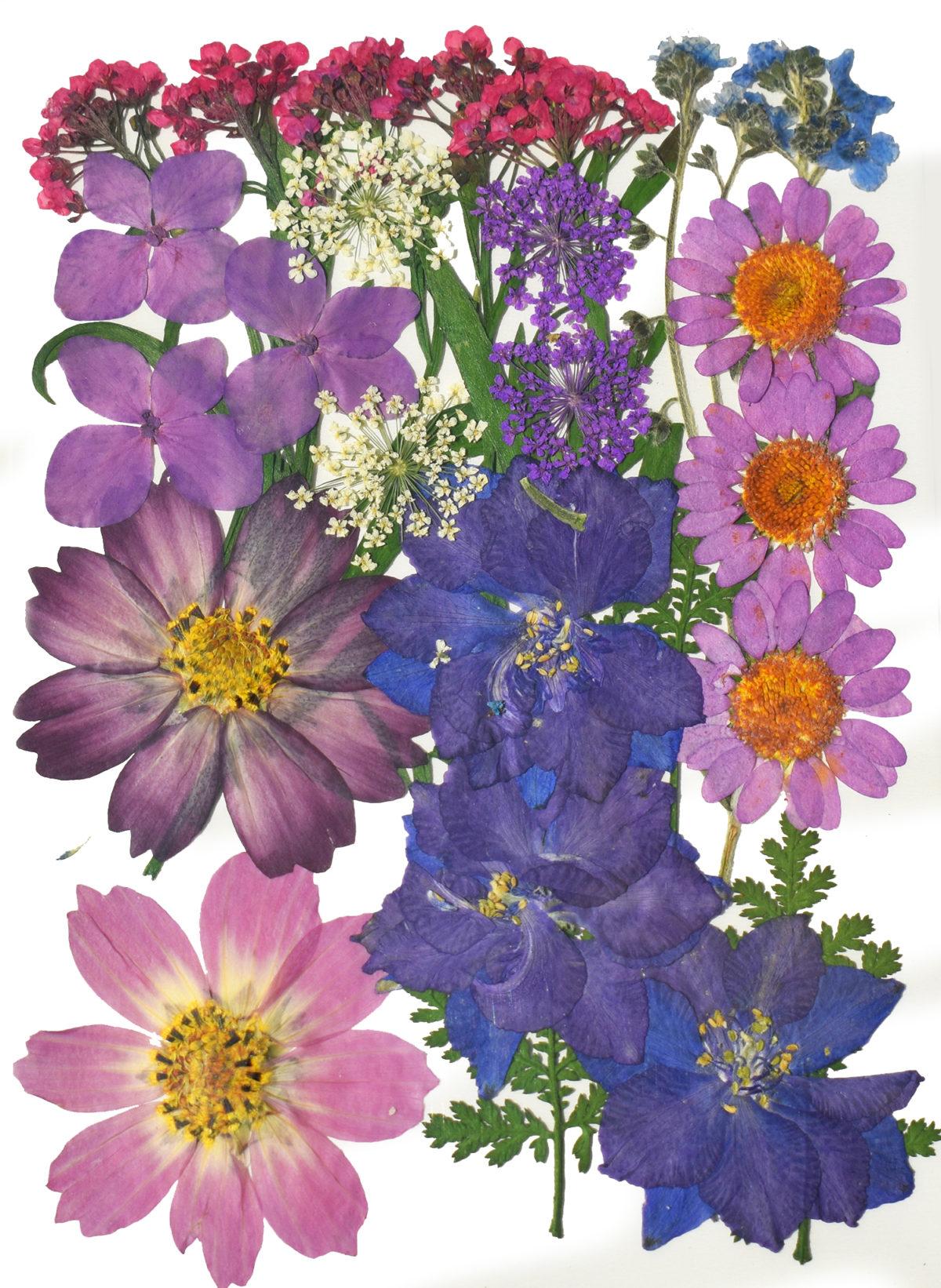 """""""Purple"""" Bouquet Dried Flowers"""